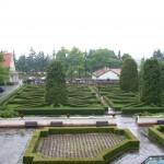 Park przy zamku w Baranowie Sandomierskim (1)